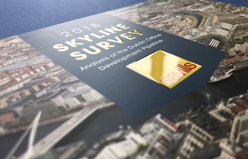 Skyline Survey Report